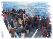 Vulcanescu ( MS): Ne asteptam ca multi dintre acesti refugiati sa fie vaccinati